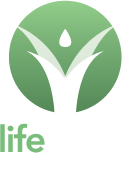 Lifehaven Womens Support Society